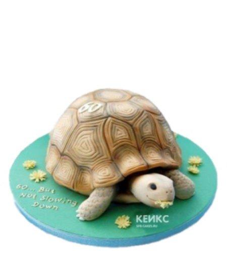Детский торт сухопутная Черепаха