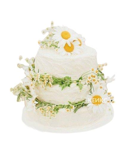 Свадебный торт украшенный большими и маленькими живыми ромашками