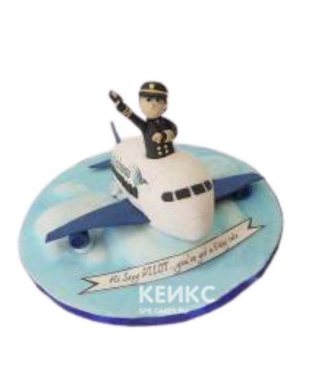 Торт в форме самолета для лётчика