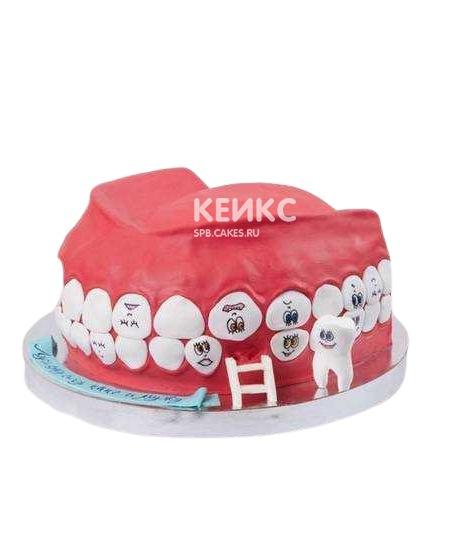 Торт для стоматолога в виде челюсти