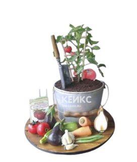 Торт Огород в виде ведерка и овощами