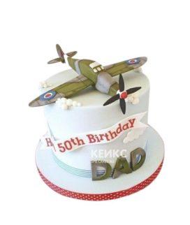Торт с зеленым военным самолетом