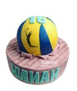 Торт волейбол в виде мяча