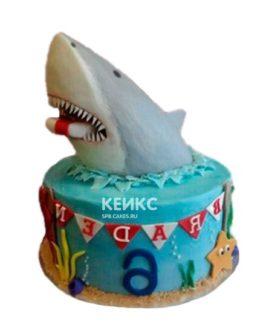 Торт акула 4