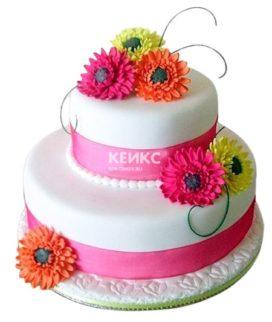 Торт герберы 2