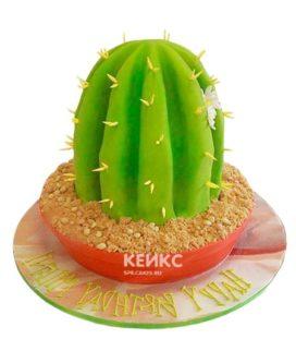 Торт Кактус 2