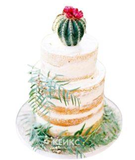 Торт Кактус 7