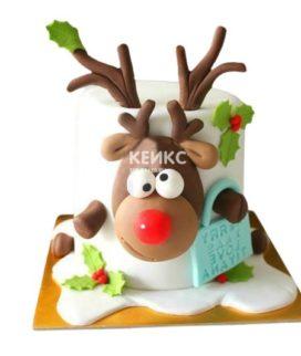 Торт Зимний 6