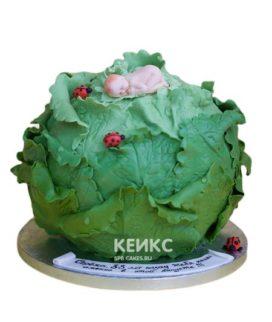 Торт Капуста