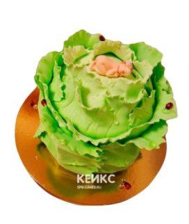 Торт Капуста 3