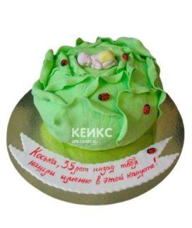 Торт Капуста 5