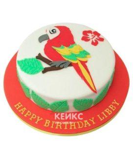Торт Попугай 3