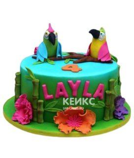 Торт Попугай 4