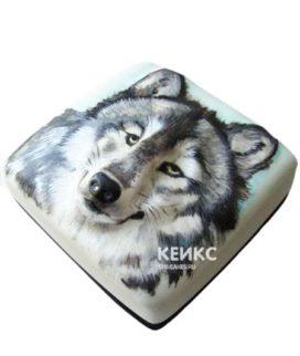 Торт Волк 6