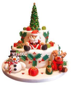 Торт Дед мороз 3