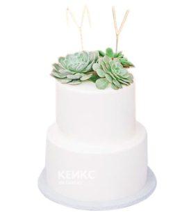 Торт Минималистичный 6