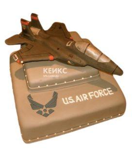 Торт Военный самолет 10