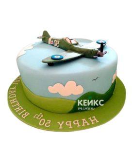 Торт Военный самолет 2