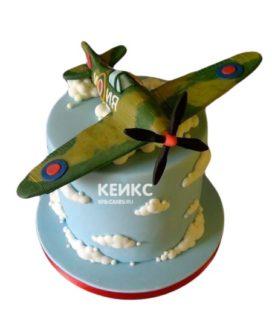 Торт Военный самолет 4