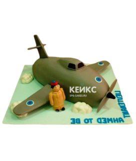 Торт Военный самолет 5