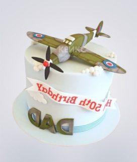 Торт Военный самолет 7