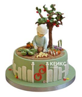 Торт Дедушке 13