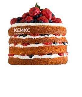Торт Голый 16
