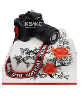 Торт Фотоаппарат 9