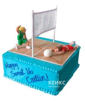 Торт Волейбол 10