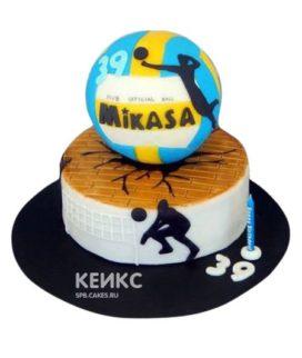 Торт Волейбол 11