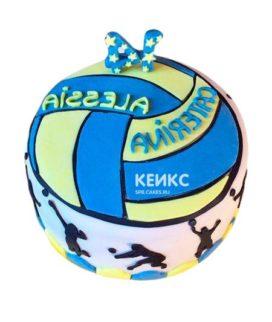 Торт Волейбол 14