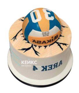 Торт Волейбол 18