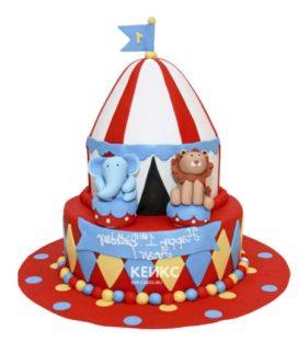 Торт цирк-14