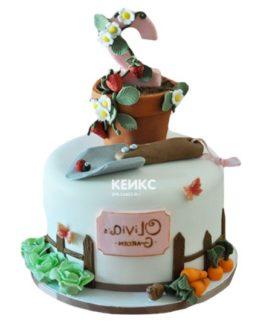 Торт дача-11