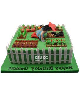 Торт дача-5