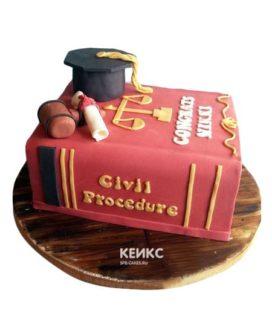 Торт для судьи-4