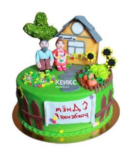 Торт домик в деревне-3