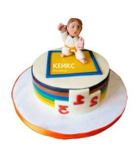 Торт дзюдо-11