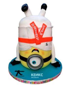 Торт дзюдо