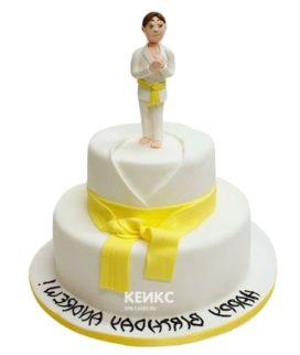 Торт дзюдо-3