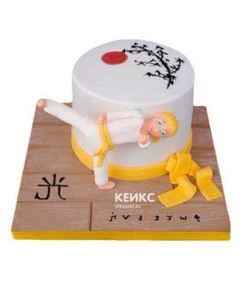 Торт дзюдо-6