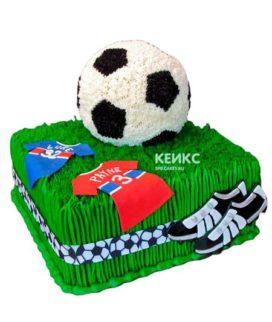Торт футбол без мастики 9