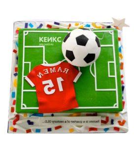 Торт футбольное поле-10