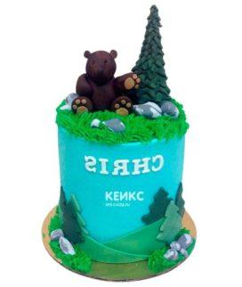 Торт гора-9