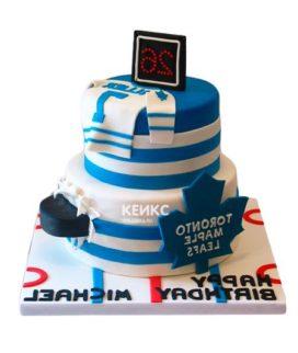 Торт хоккей-12