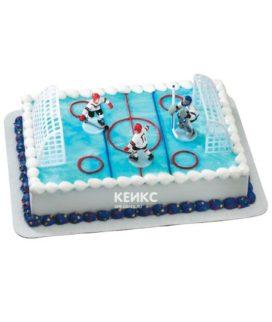 Торт хоккейное поле-4