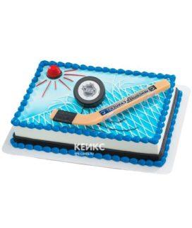 Торт хоккейное поле-5