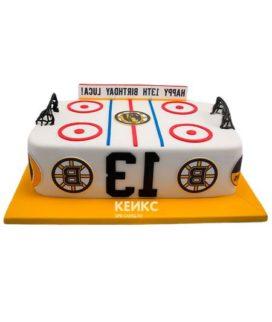 Торт хоккейное поле-6