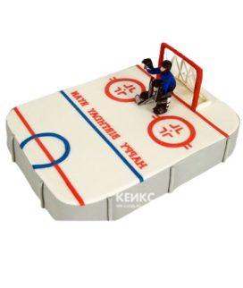 Торт хоккейное поле-7