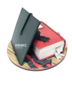 Торт книга учителю 5